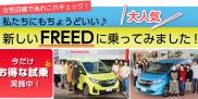 女性目線で、Hondaの人気車種FREEDを徹底チェック!Honda Cars 宮城中央のお店へ!