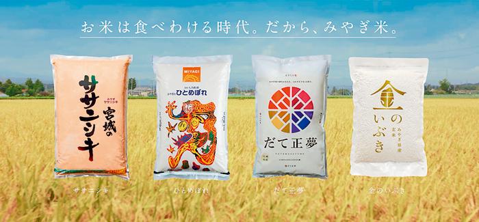 【知りたい みやぎ-宮城のいいこと、再発見-】 その4 お米は食べわける時代!プレミアム米から玄米までみやぎ米の魅力を特集