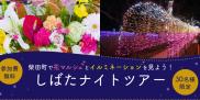 柴田町で花マルシェとイルミネーションを見よう!冬の「しばた ナイトツアー」はいかが?