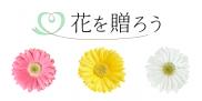 花を贈ろう。~お花の写真とメッセージ~