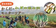 【参加者募集】かくだ「ねぎ」収穫体験モニターツアー